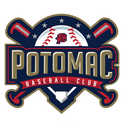 9 Best Baseball Team Logos and How to Make Your Own for Free.