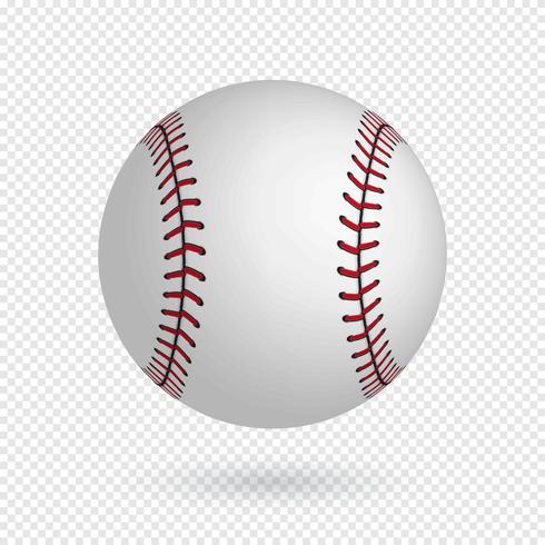 Realistic Baseball Vector.
