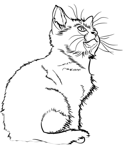 Kitten coloring page.