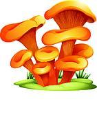 Basidiomycota Clip Art.