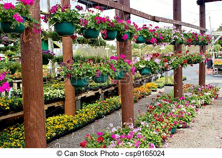 Hanging flower baskets Stock Photos and Images. 1,221 Hanging.