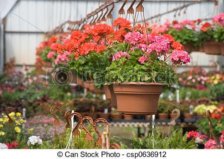 Hanging basket Stock Photos and Images. 3,061 Hanging basket.