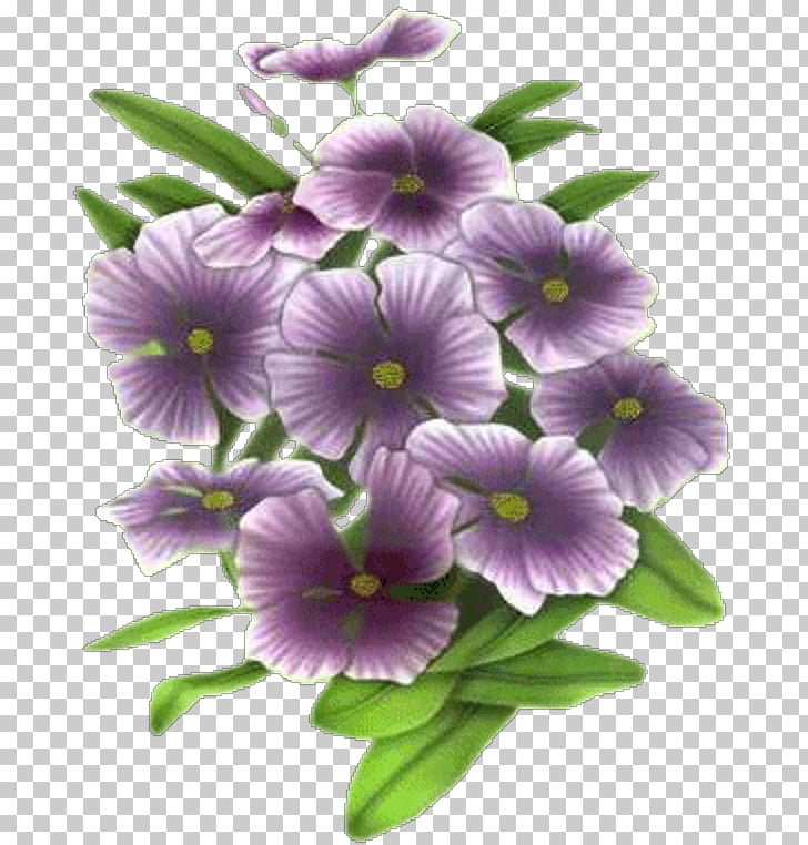 Pansy Flower Animation Blue rose, Yb PNG clipart.