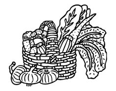 fruit and veg coloring.