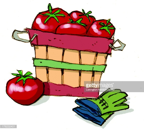 Bushel Baskets Stock Photos and Pictures.
