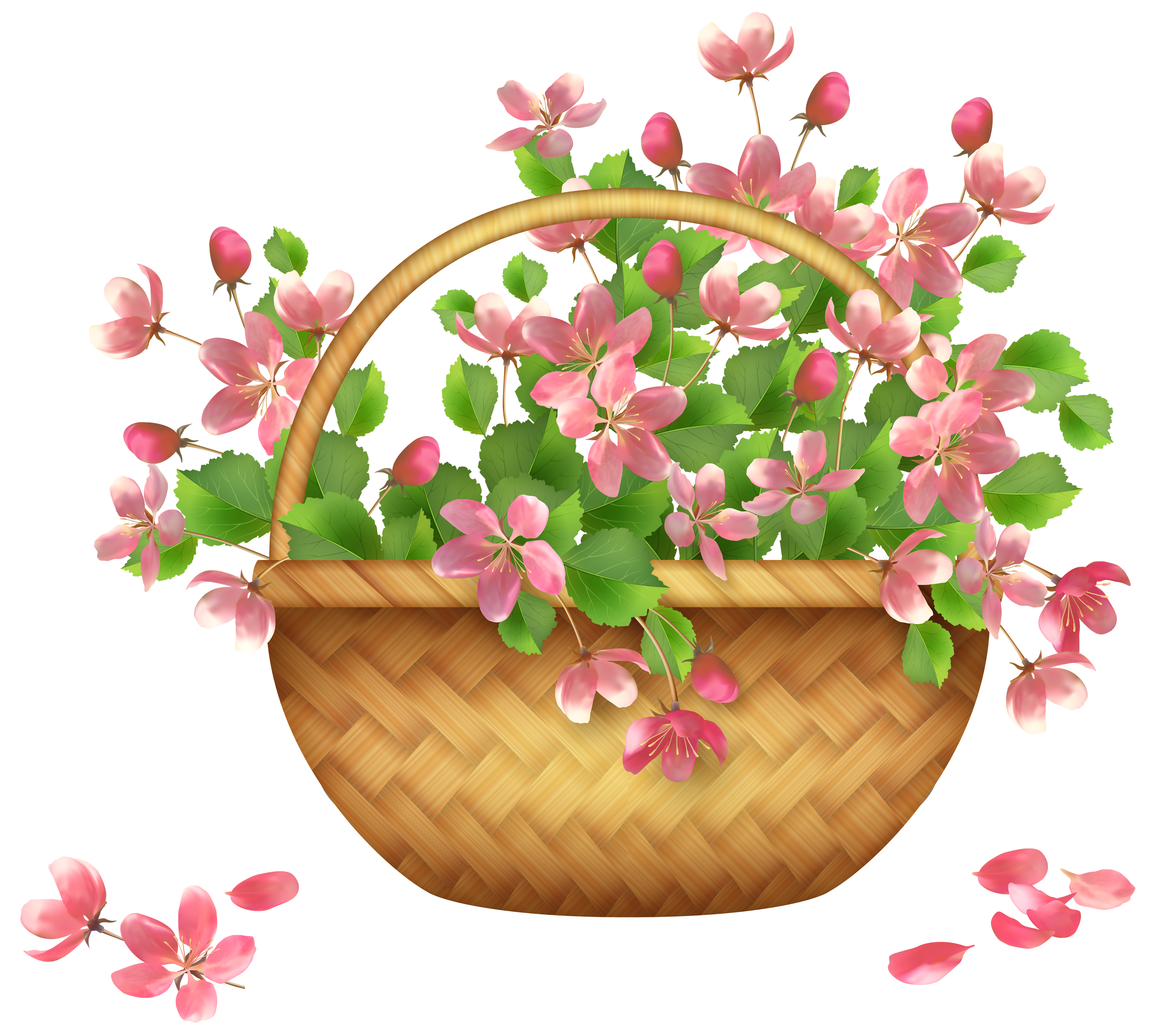 Basket Flower Clip art.