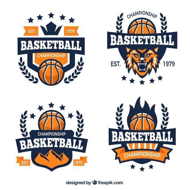 Basketball team logos Vector.