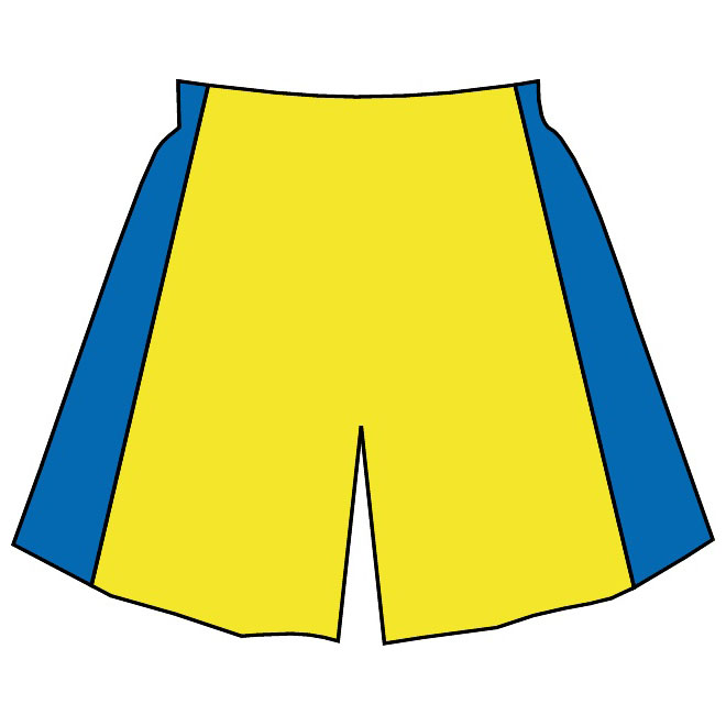 Basketball shorts vector image.