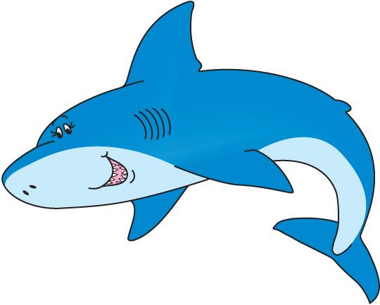 Clip art shark.