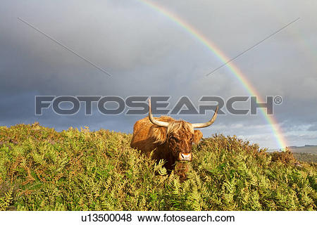 Pictures of England, Derbyshire, Baslow Edge, Stormy skies.