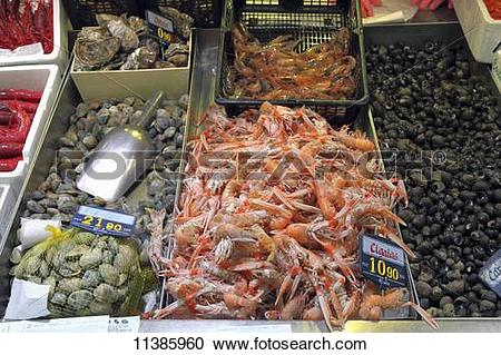 Stock Photography of Scampi, clams, oysters and sea snails at a.