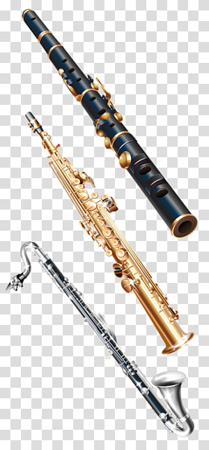 China Soprano saxophone Musical instrument, Saxophone music.
