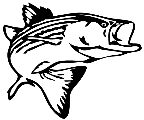 Bass Fish Outline Clip Art Free Clipart Images.