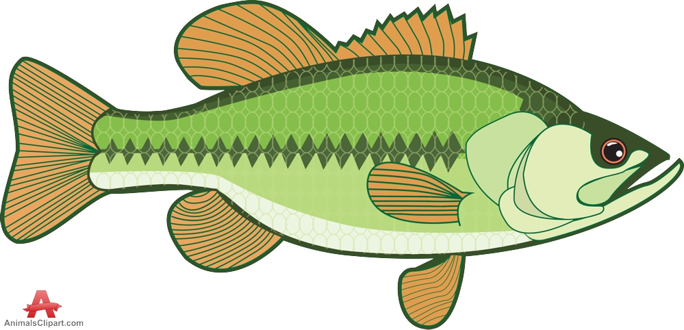 Bass fish head clipart free.