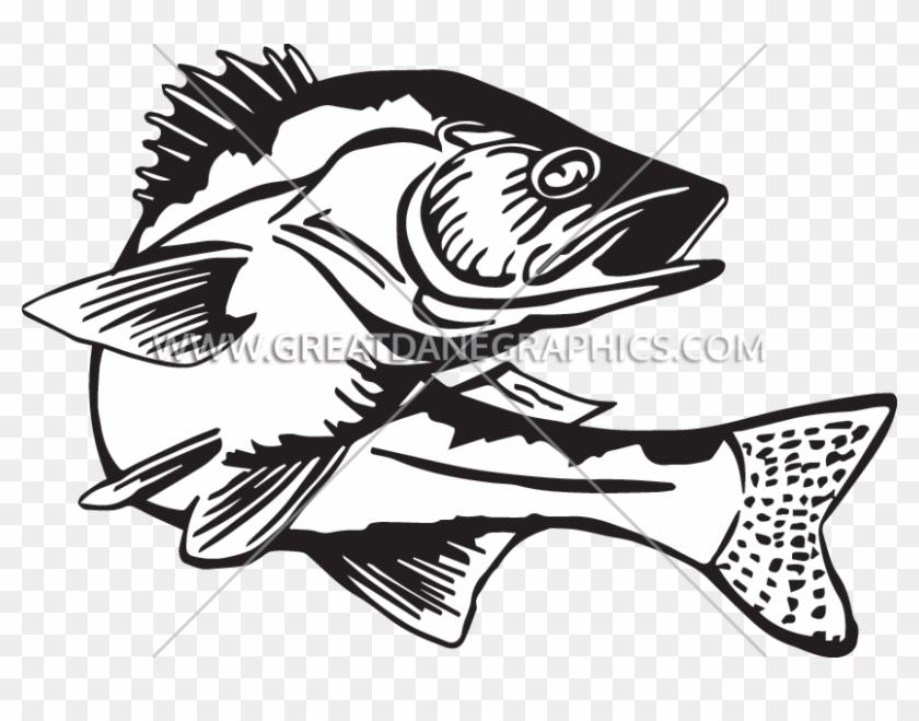 Banner Royalty Free Bass Fishing Clipart.
