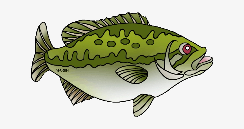 Image Free Bass Fishing Clipart.