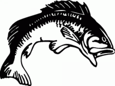 Bass Black And White Clipart.