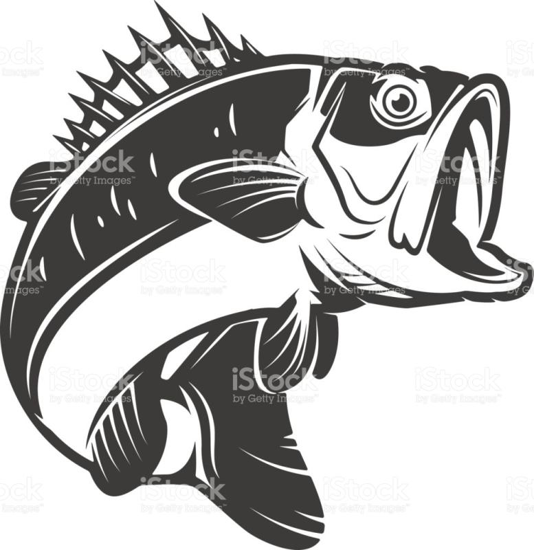 Bass fish clipart black and white 2 » Clipart Station.
