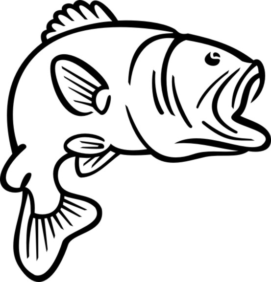 Free Bass Fish Cliparts, Download Free Clip Art, Free Clip Art on.