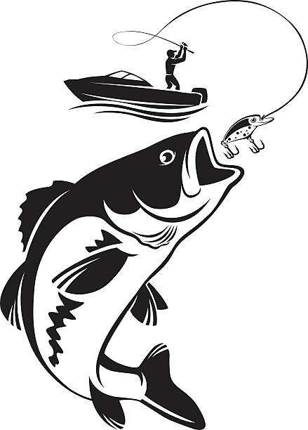 Bass fish clipart black and white 7 » Clipart Station.