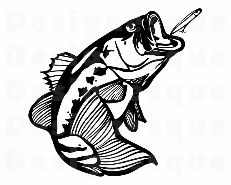 Bass Fish #4 Svg, Fishing Svg, Fish SVG, Fishing Clipart, Fishing Files for  Cricut, Fishing Cut Files For Silhouette, Fishing Dxf, Png, Eps.