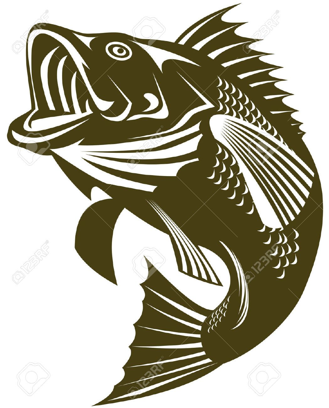 Largemouth Bass Cliparts Stock Vector And Royalty Free Largemouth.