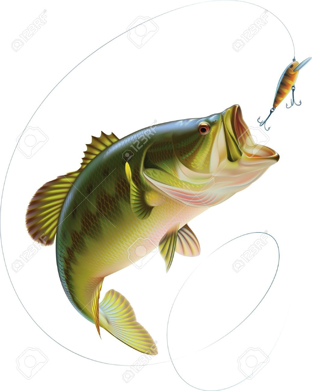 Bass Jumping Out of Water Clipart (65+).
