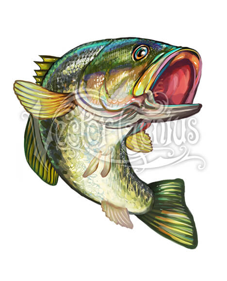 Jumping Bass Gamefish ClipArt.