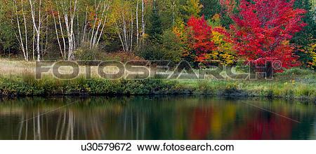 Stock Photo of Autumn reflections in Bass Lake, Walden, Ontario.