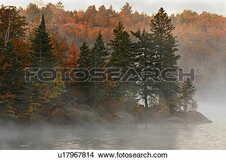 Stock Photo of Morning fog on Bass Lake, Greater Sudbury, Ontario.