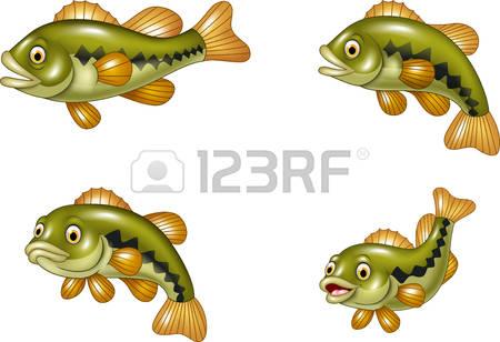 2,379 Bass Fish Cliparts, Stock Vector And Royalty Free Bass Fish.