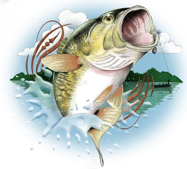 Bass fishing clip art.