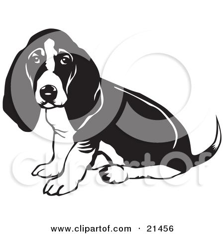 Clipart Illustration of a Basset Hound Dog With Sitting And.