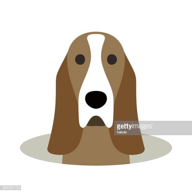 60 Top Basset Hound Stock Illustrations, Clip art, Cartoons, & Icons.