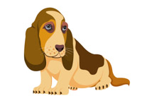 Search Results for basset hound.