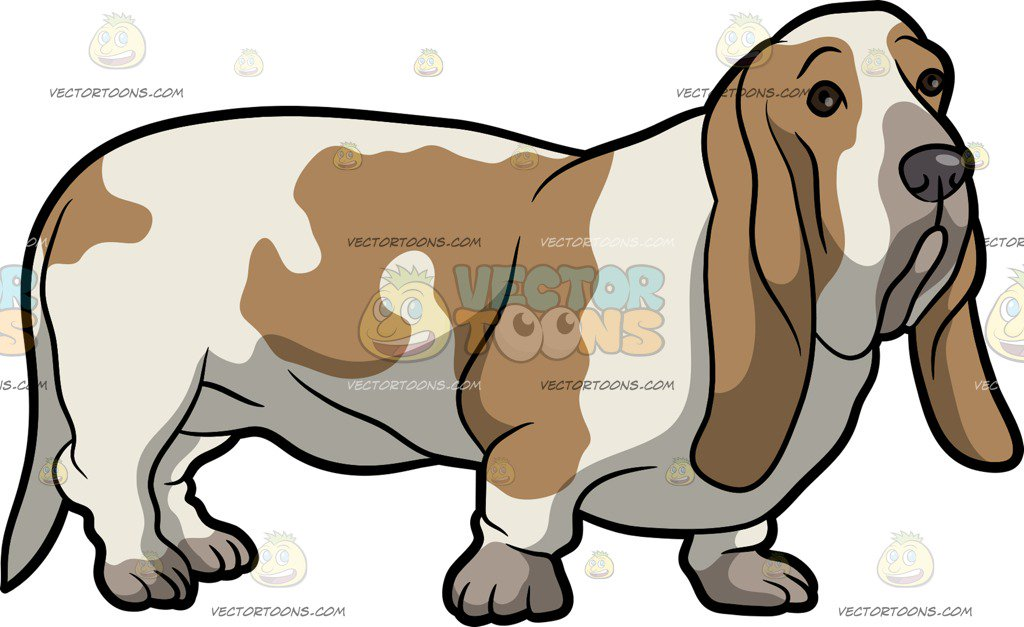 Basset Hound Clipart 6.