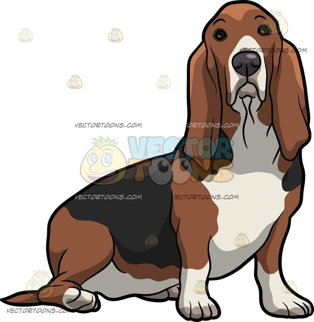 Basset hound clipart 4 » Clipart Station.