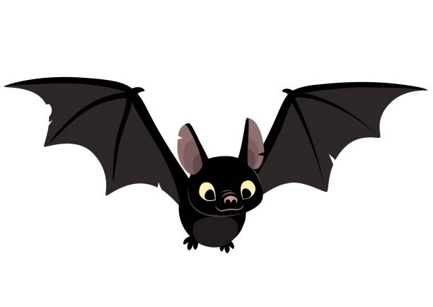Best Bat Illustrations, Royalty.