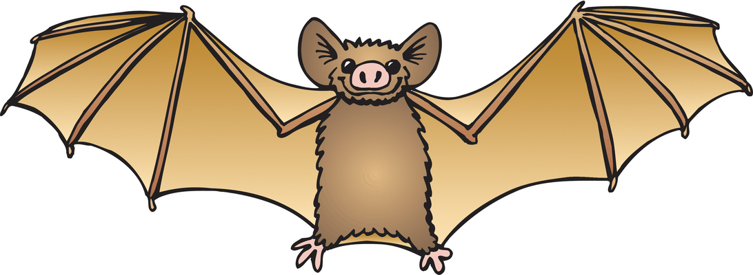 bat clipart clipground would