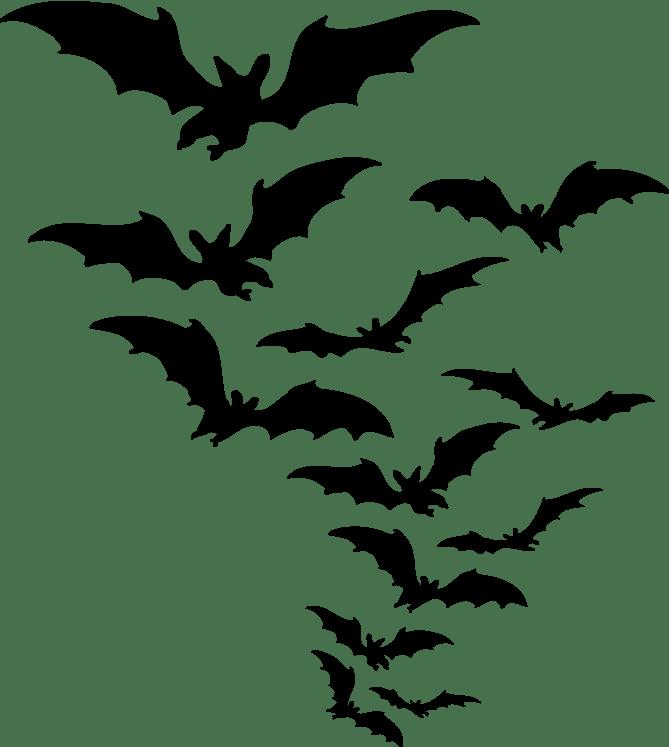 Group Of Bats Clipart transparent PNG.