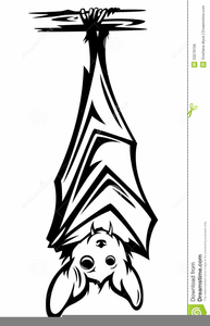 Bat Hanging Upside Down Clipart.