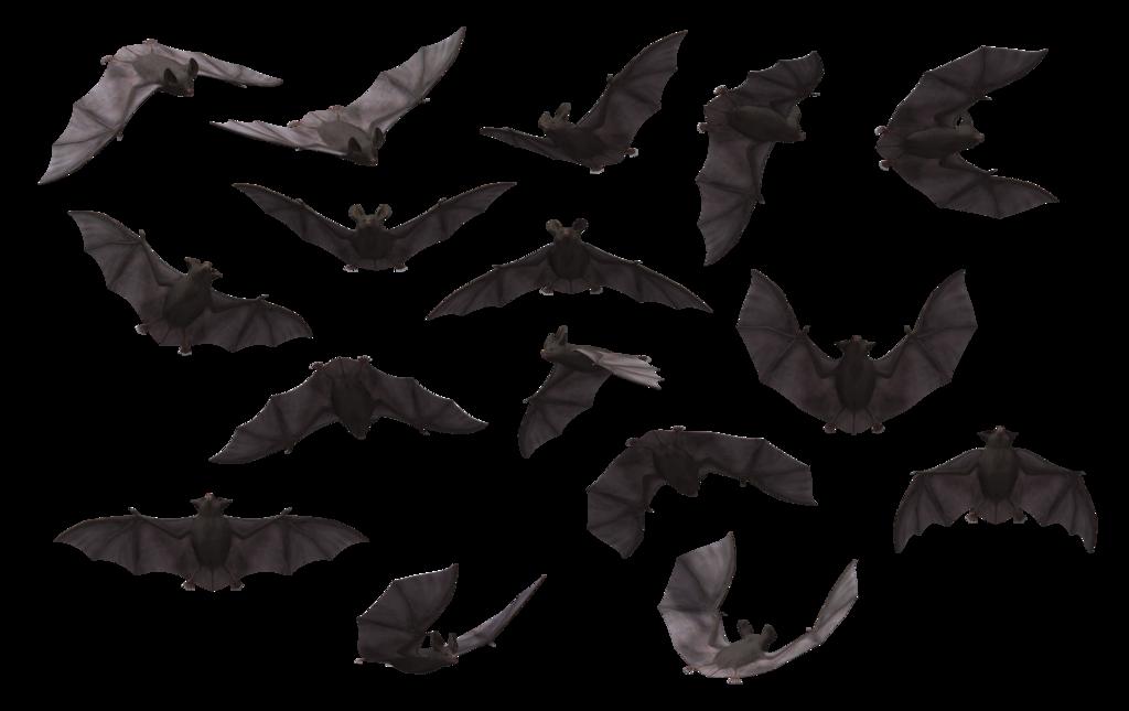 Bat HD PNG Transparent Bat HD.PNG Images..