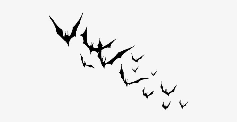 Bat Png Background Image.