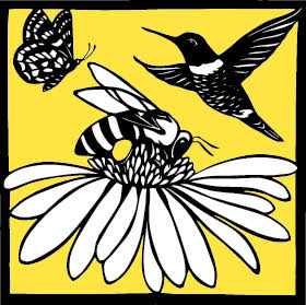 Bee a Pollinator!.