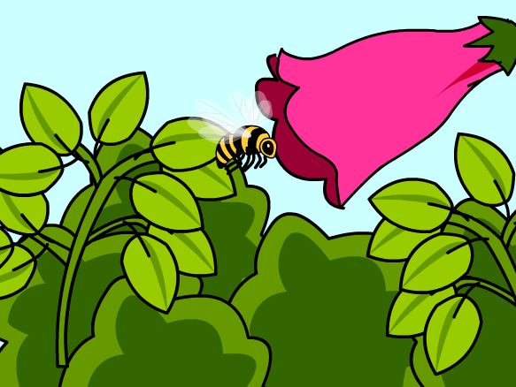 Pollination Lesson Plans and Lesson Ideas.