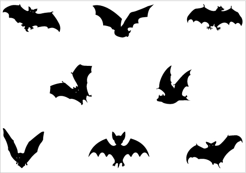 Bat Silhouette Vector.