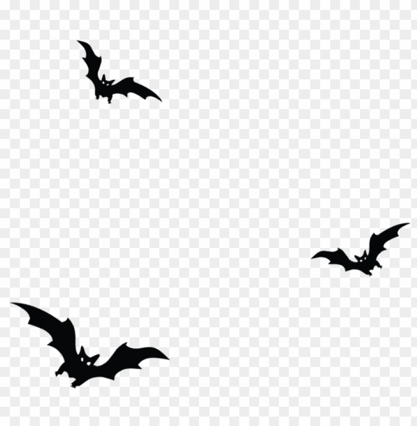 Download haunted bats png vector png.