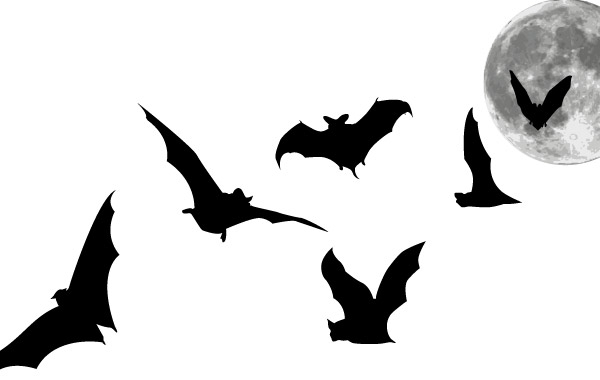 Free download of Bat vector graphics and illustrations.