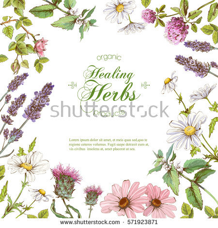Herbal Stock Photos, Royalty.