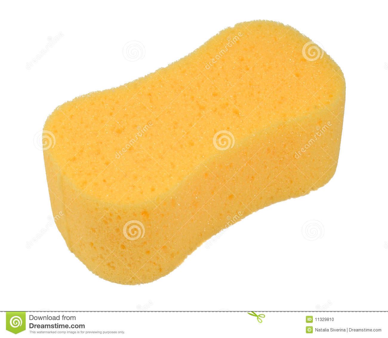 Sponge Clipart Bath Sponge #DUhDt0.